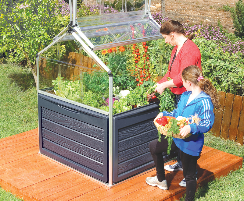 coldframes grow decks mini greenhouse